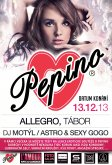 13.12.2013 - Pepino party - Allegro club, Tábor