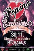 30.11. 2012 - Pepino Exclusive Party - Gimlet, Pardubice